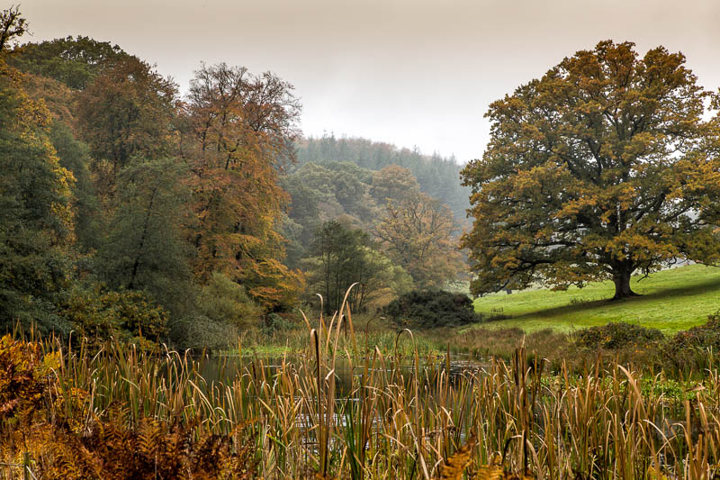 Stourhead autumn National Trust Wiltshire Dorsetcamera