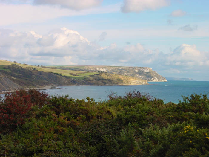 Black Head ledges Dorset Dorsetcamera  Coastal Pathe Walk