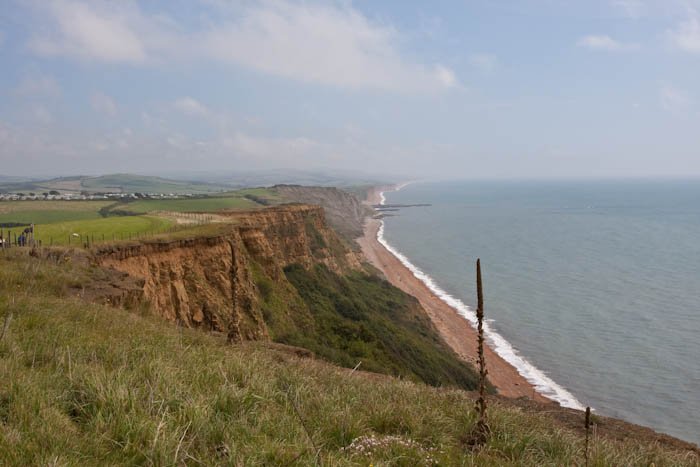 Seatown Dorset Coast Path Dorsetcamera